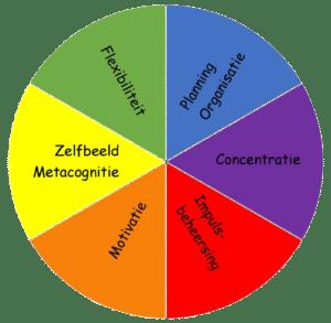 EVO model Executieve Vaardigheden in het Onderwijs